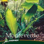 99 Things: Monteverde Travel Guide